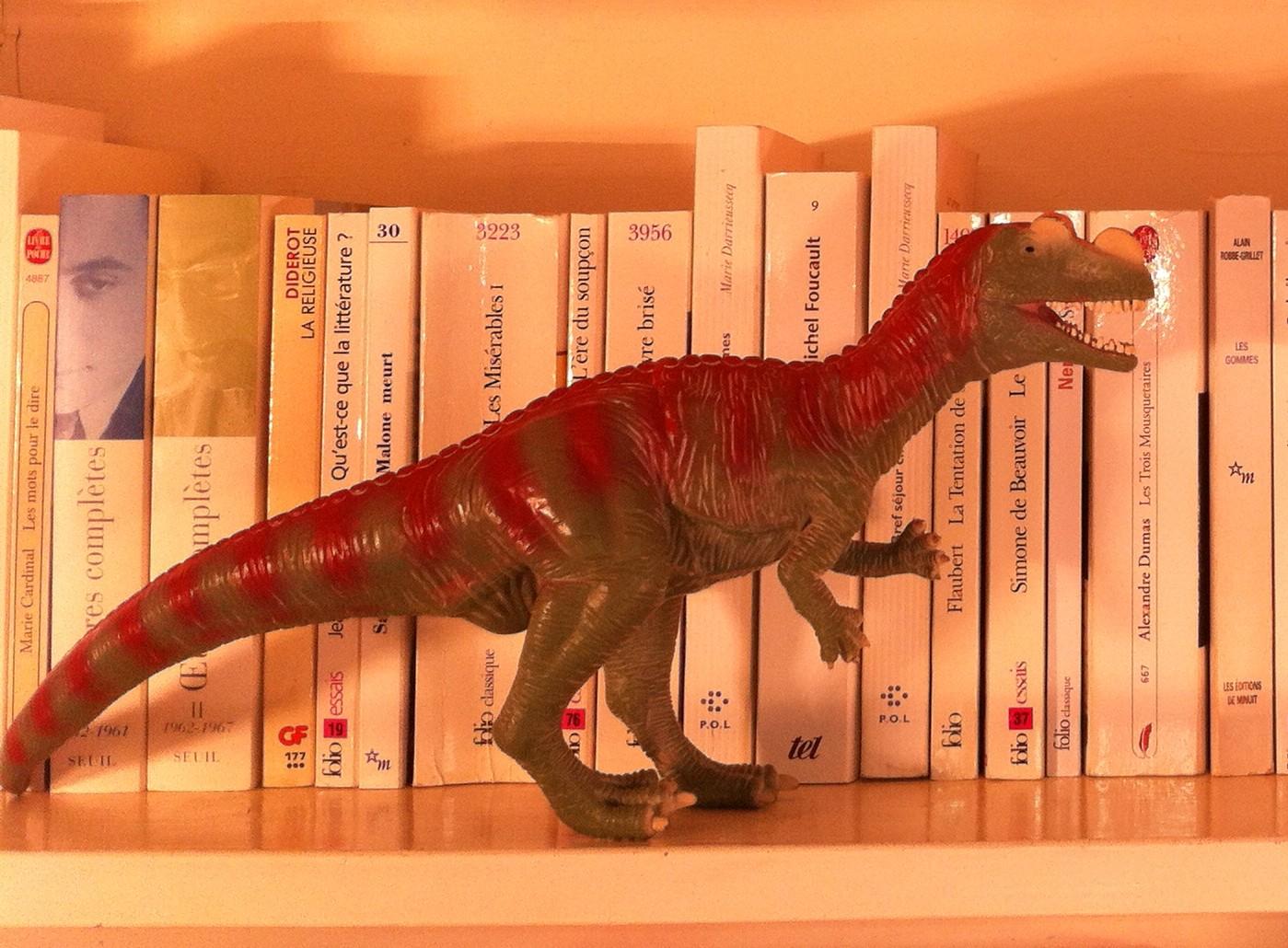 Bright bookshelf 008